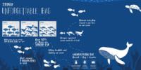 【海外起業アイデア】マレーシアのエコバックキャンペーン「The Unforgettable Bag」